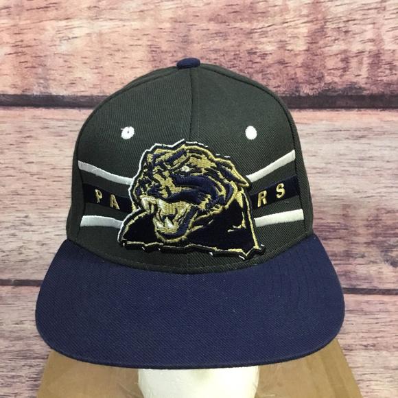 d870d931d Zephyr Pittsburgh Panthers Hat Adjustable Gray